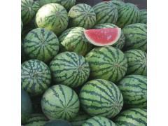 重庆西瓜供应  精品水果