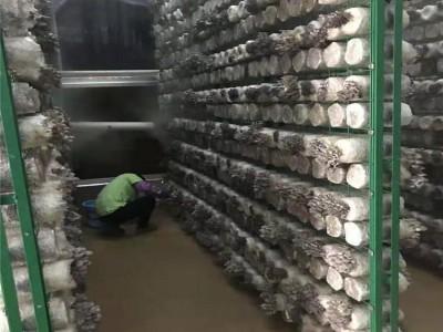 重庆食用菌层架网河南农业菌菇网格架